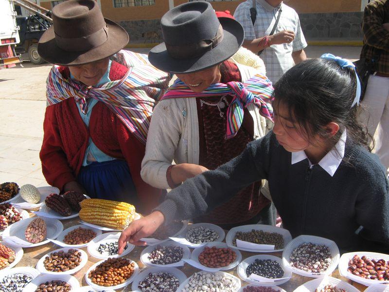 soberanía y seguridad alimentaria