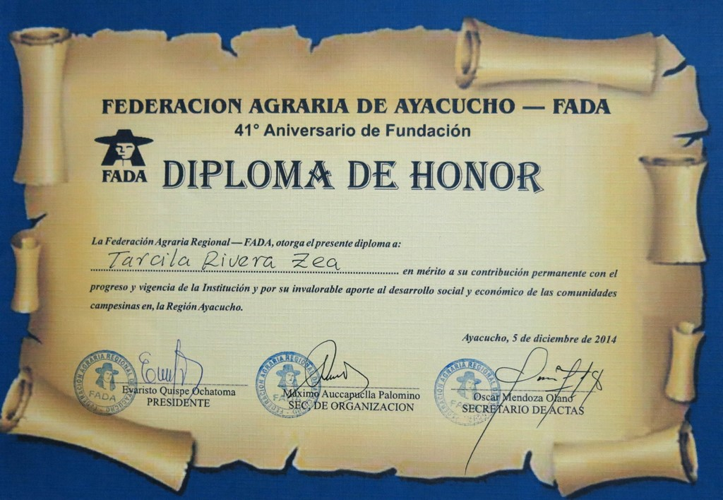diploma FADA