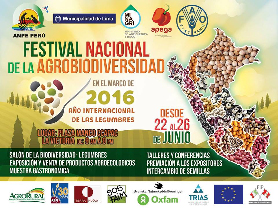 Festival-de-legumbres